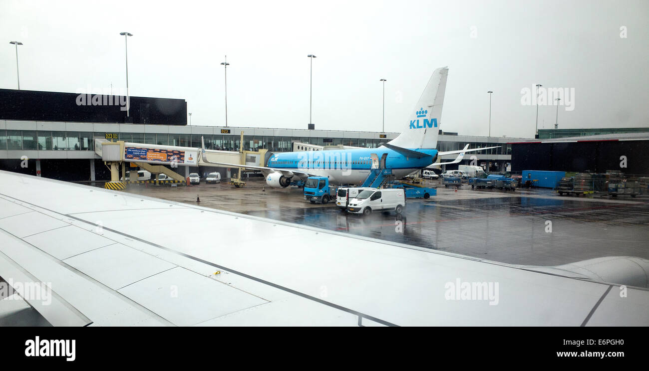 KLM airplane taxing into the loading area of the Schiphol Airport during a light rain. Amsterdam Netherlands - Stock Image