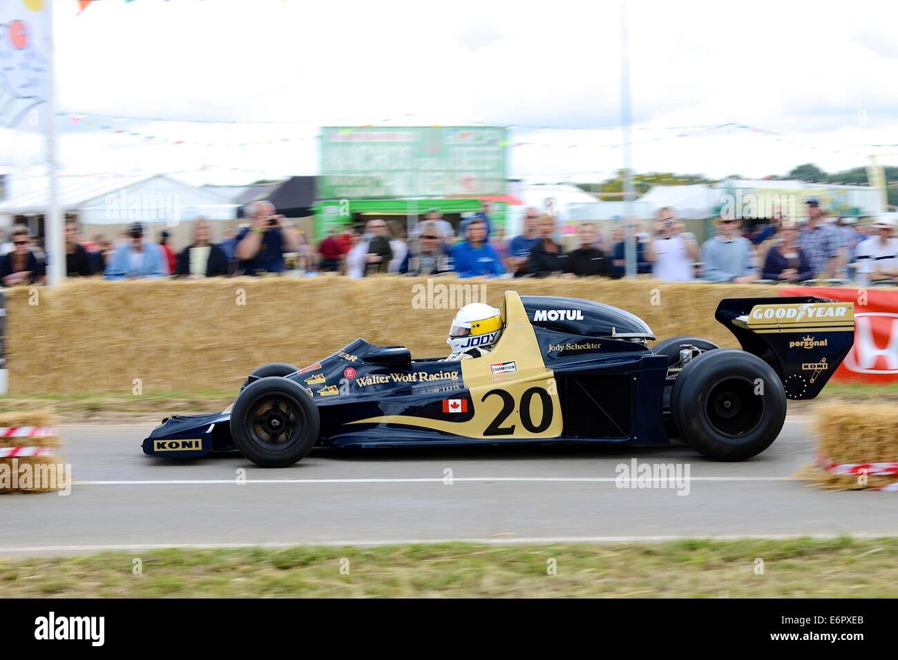 Wolf RW1 F1 car at Chris Evans' CarFest South in aid of Children In Need - Stock Image