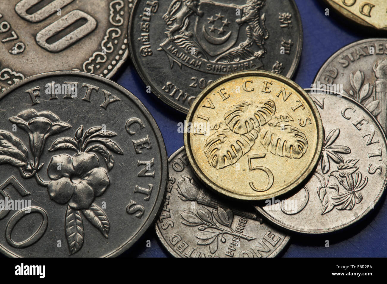 Coins of Singapore. Fruit salad plant (Monstera deliciosa) depicted in the Singapore five cents coin. - Stock Image