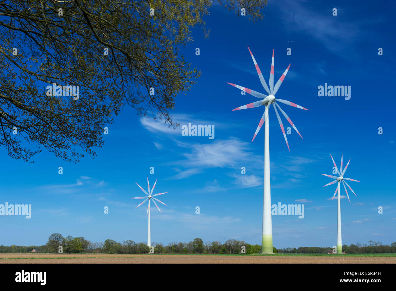 wind turbine, carum, vechta, vechta district, oldenburger münsterland, lower saxony, germany - Stock Image
