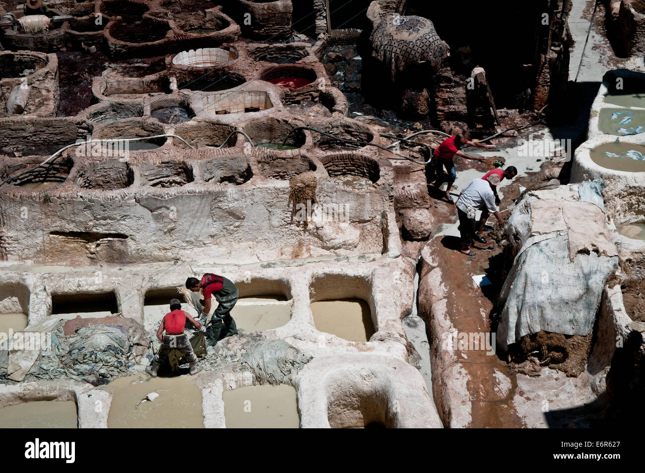 People working at the tanneries in Fez, Morocco Stock Photo