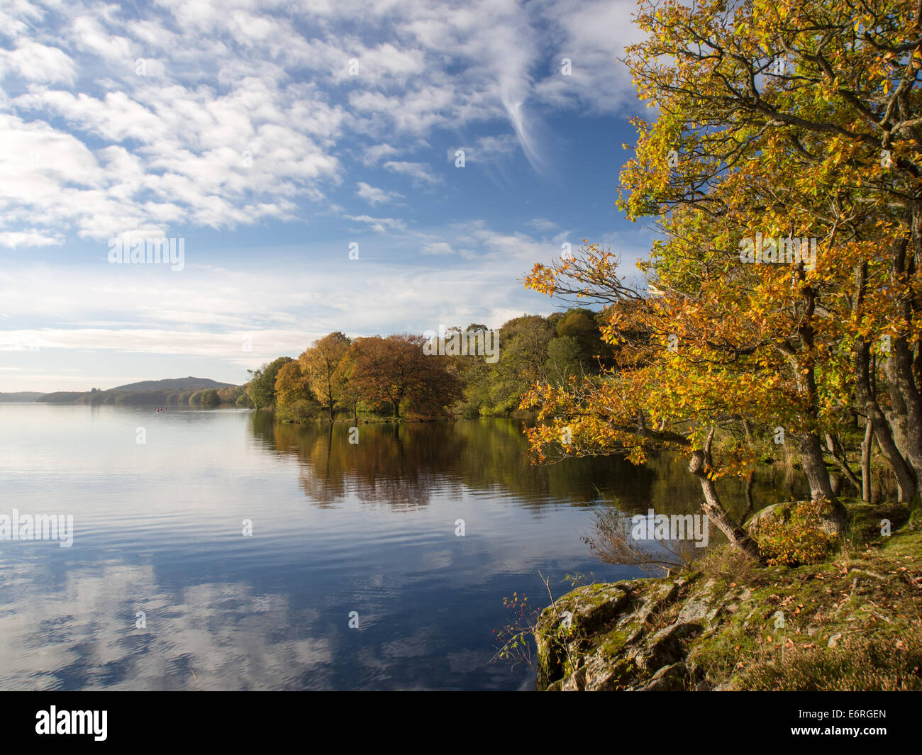 Quiet water of the Lake Windermere and autumn colours along the lake shore, in the Lake District, England. - Stock Image