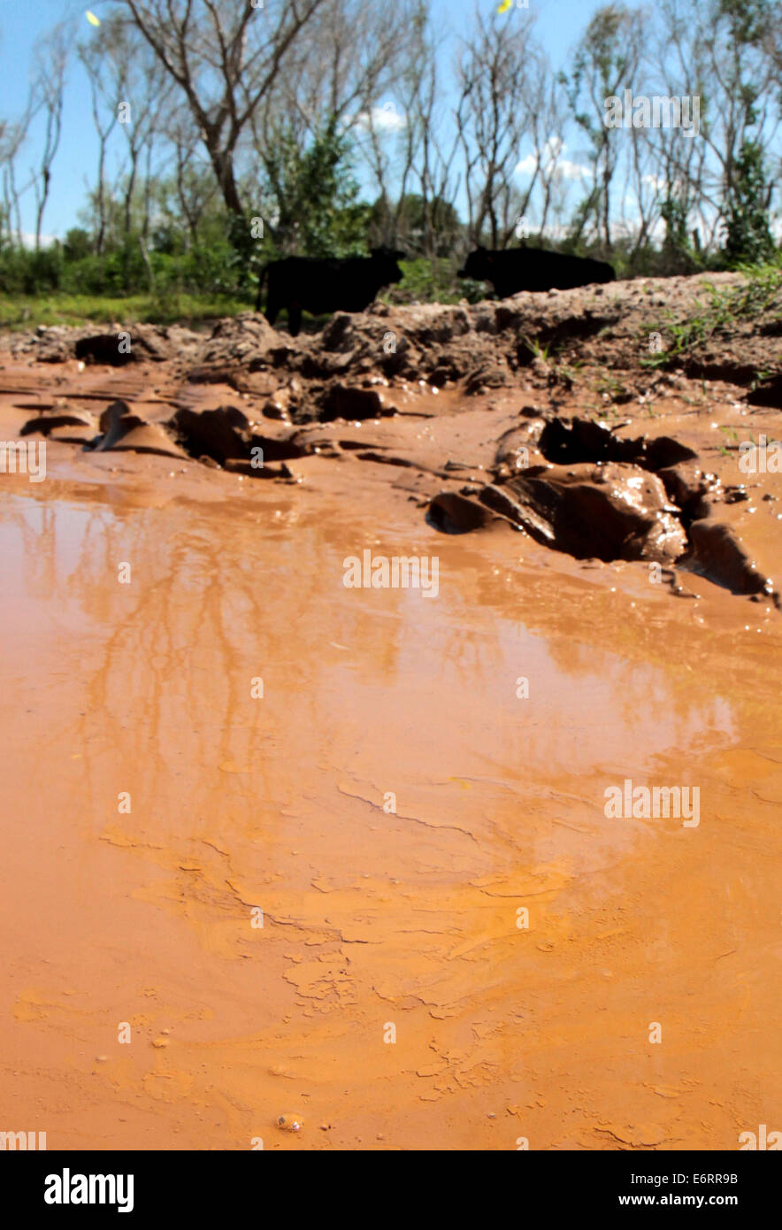 (140830) -- SONORA, Aug. 30, 2014 (Xinhua) -- Image taken on Aug. 12, 2014, shows the Sonora River affected after - Stock Image