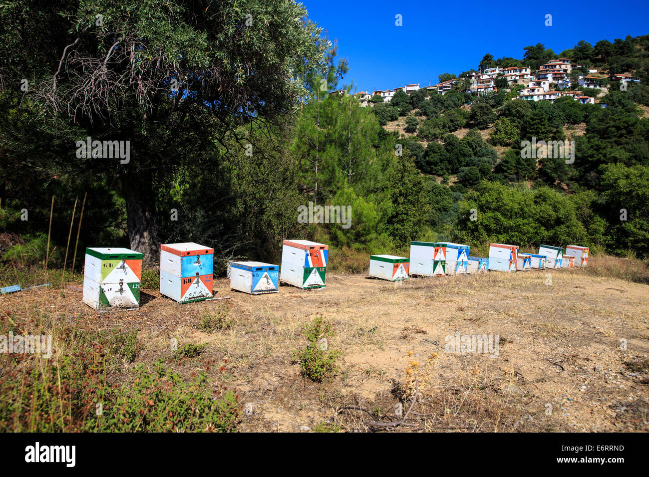 Beehives and the village of Sotiras in the background - Stock Image