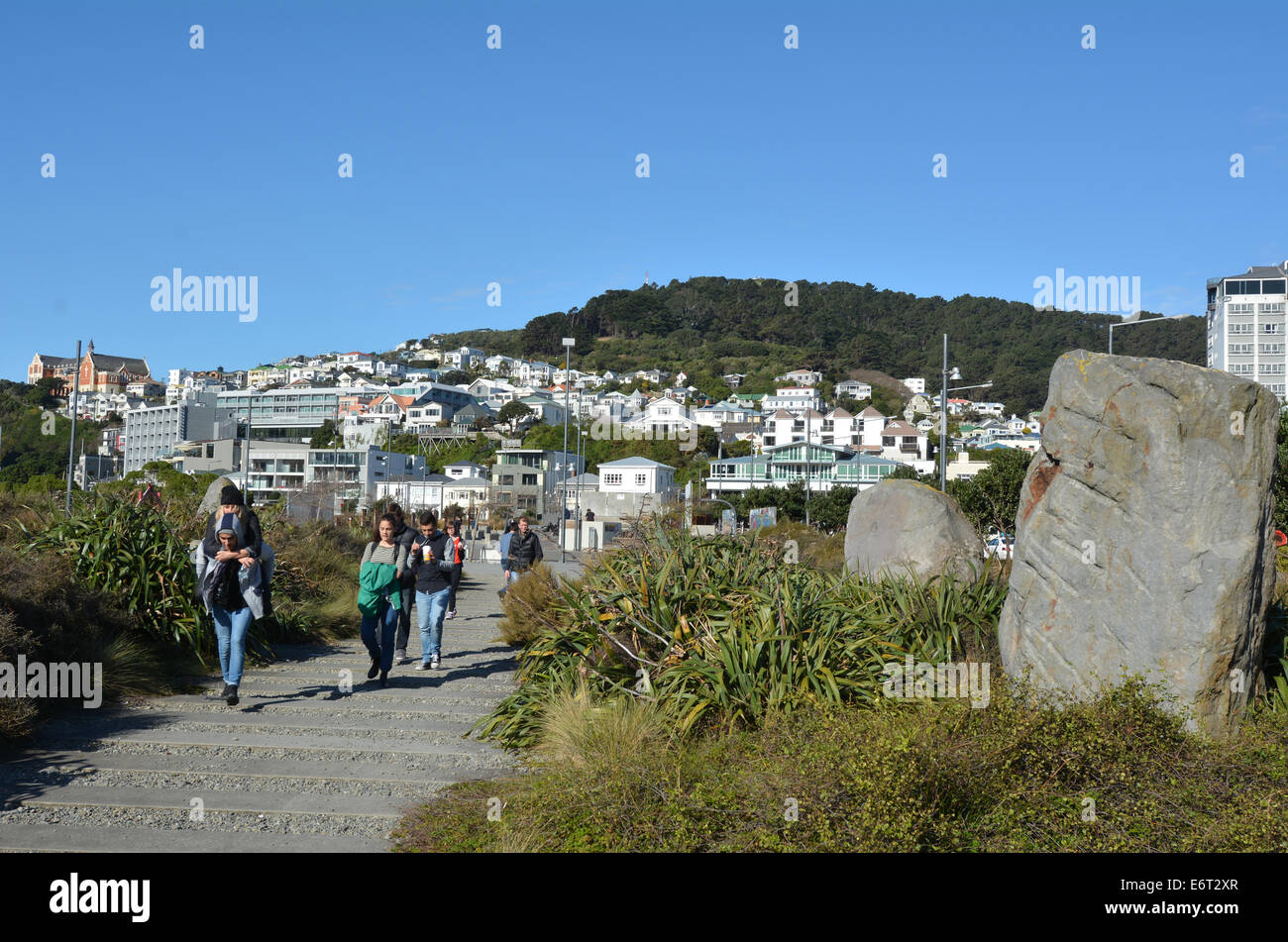 WELLINGTON - AUG 22 2014:Visitors at Waitangi skate park.Wellington is New Zealand's centre of government and - Stock Image