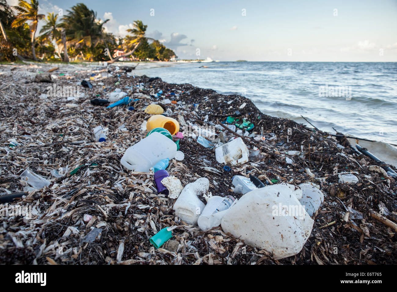 Plastic Waste washed up at shore, Turneffe Atoll, Caribbean, Belize - Stock Image