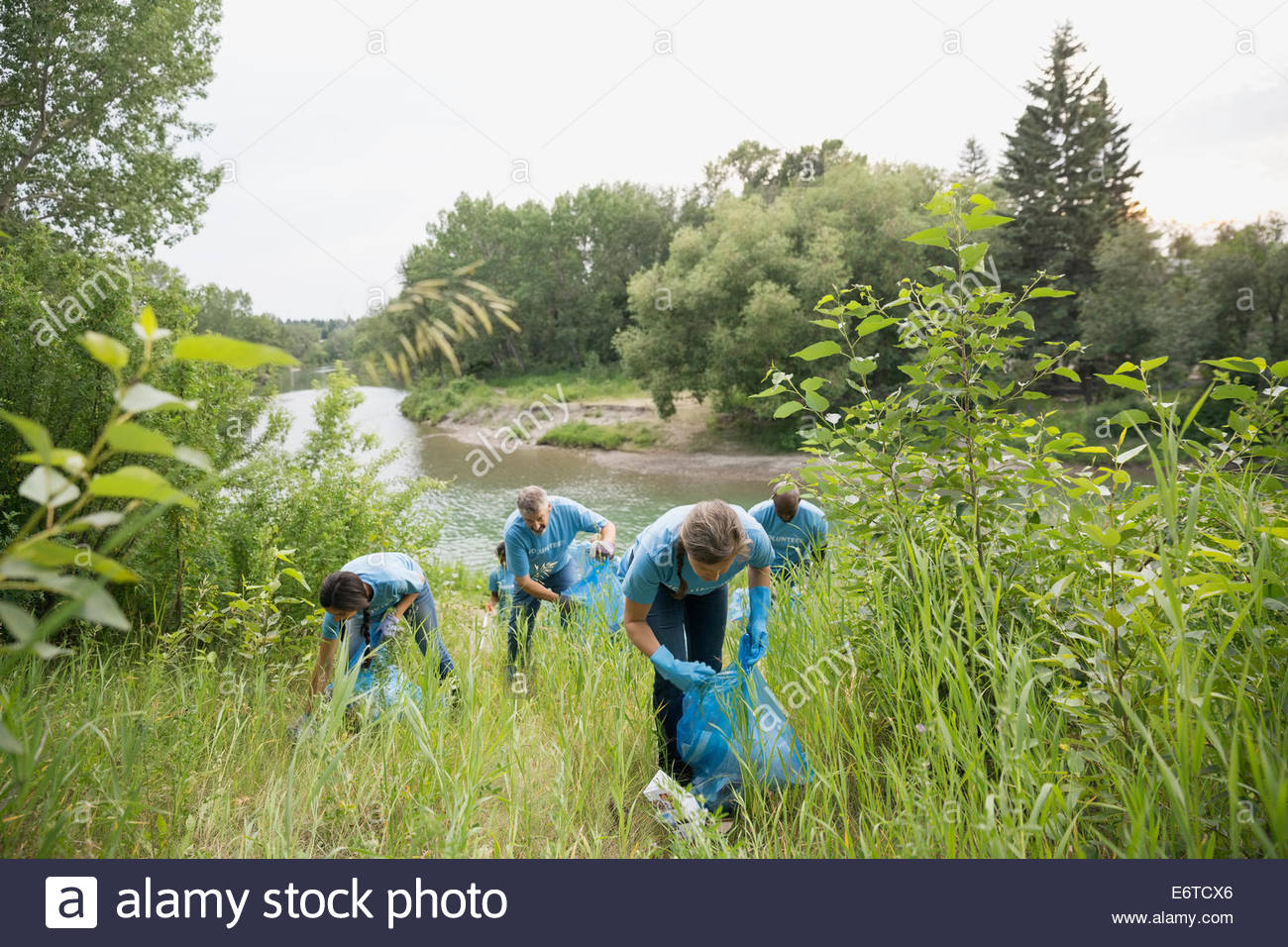 Volunteers picking up garbage in field - Stock Image