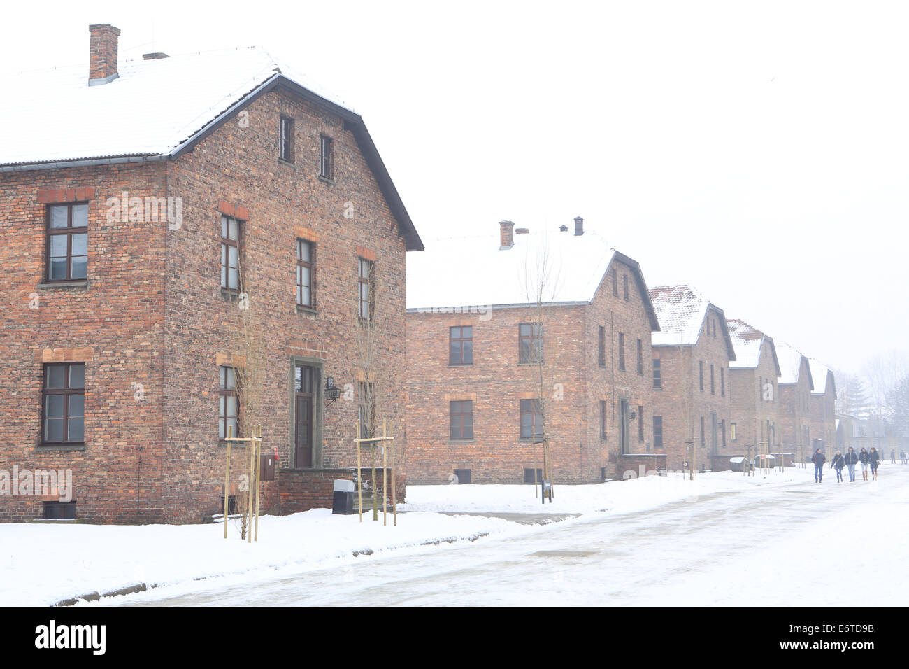 Residential barracks at the Auschwitz-Birkenau Memorial to the holocaust perpetrated by Nazi Germany - Stock Image