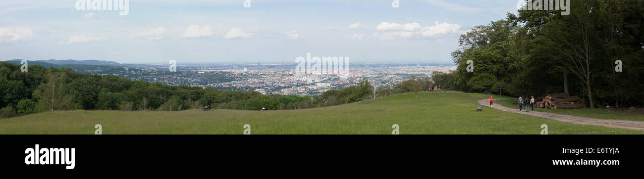 Aerial view above the city of vienna from the wiener blick at lainzer tiergarten - Stock Image