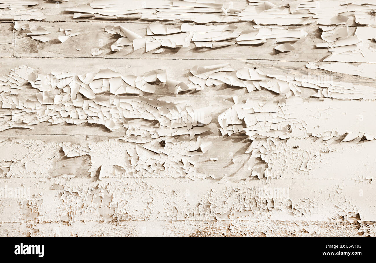 Shabby Chic Style Or Vintage Background Of White Beige Wood