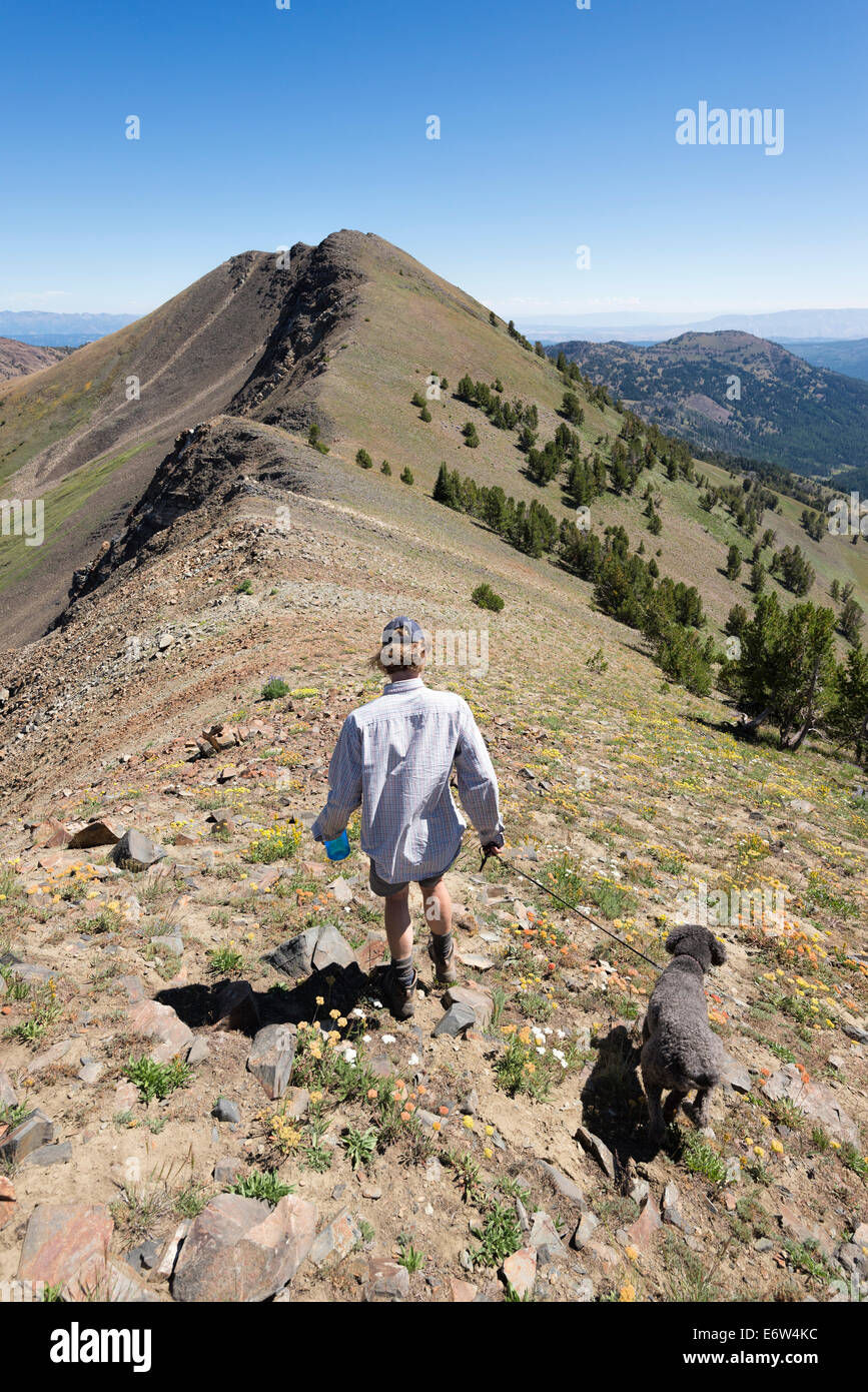 Woman hiking with a dog high in Oregon's Wallowa Mountains. - Stock Image