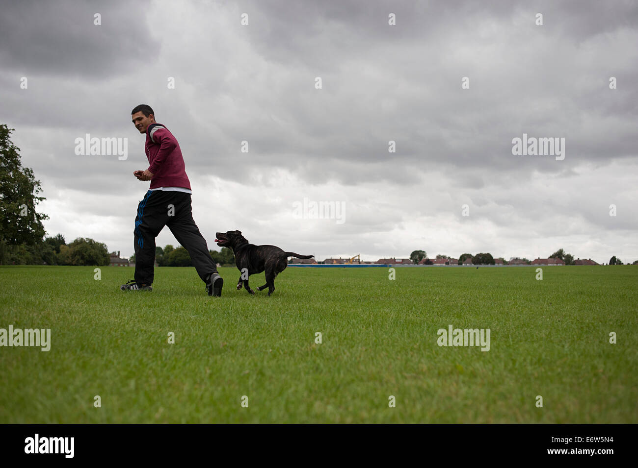 Young man runs with his dog on the grass in a large London park. - Stock Image