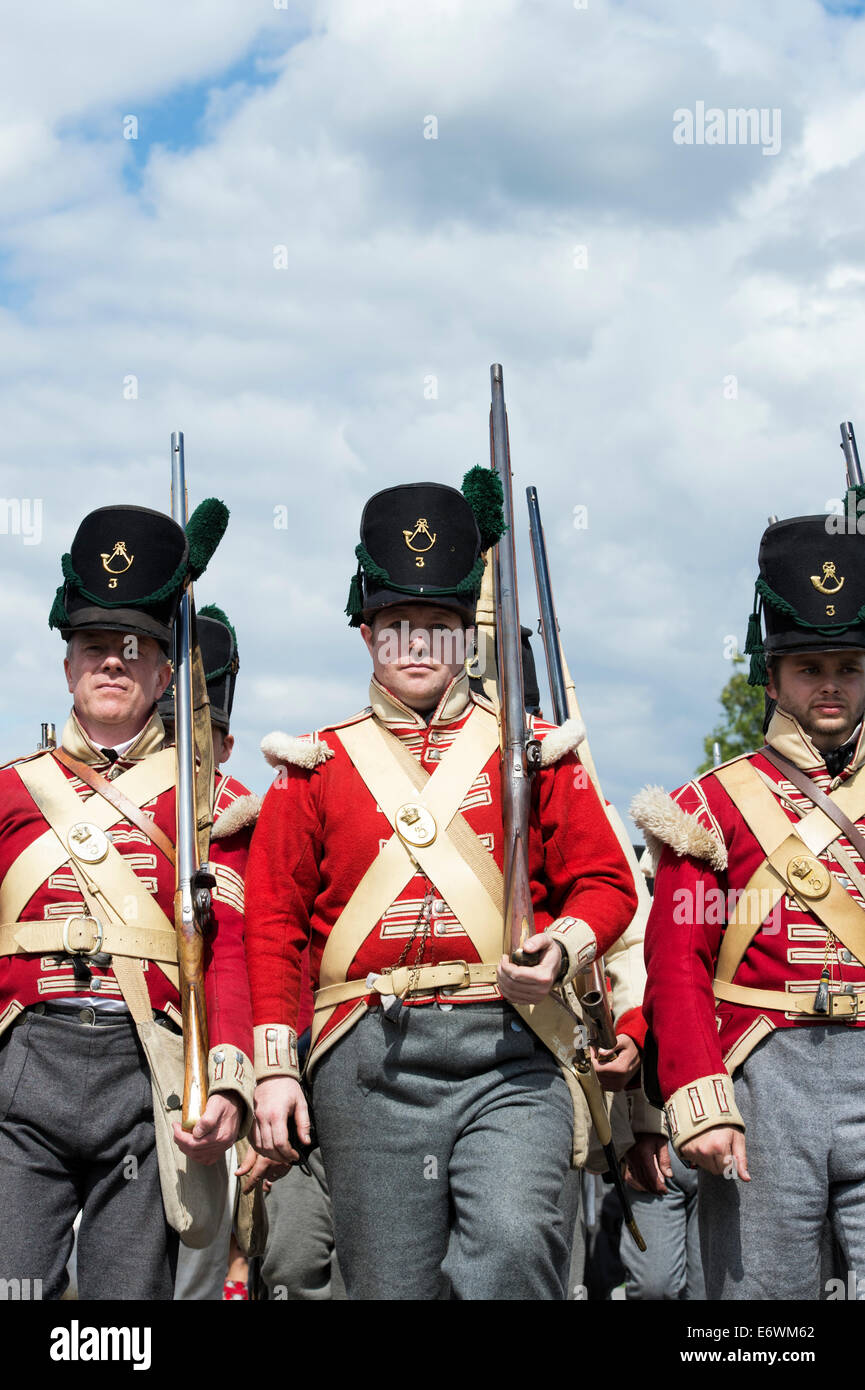 3rd East Kent Regiment of foot. The Buffs. Infantry regiment of the British Army at a historical re-enactment. Detling, - Stock Image