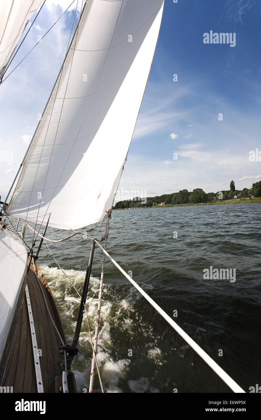 Sailing boat on the Schlei, view onto the northbank and Ulsnisstrand, Schleswig-Holstein, Germany, Europe - Stock Image