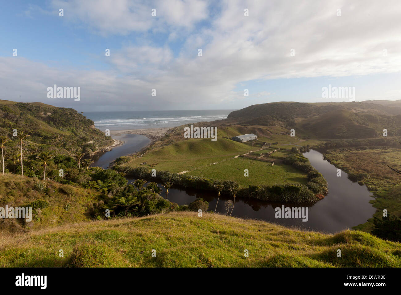 Farmland on the Anatori River estuary, pastures surrounded by arm of the river and coastline, west coast of South - Stock Image