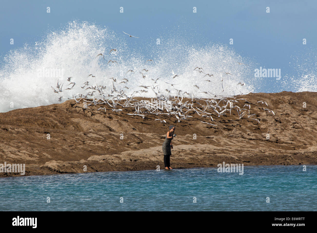 Woman fishing at Castle Point, seabirds, Castle Point, North Island, New Zealand - Stock Image