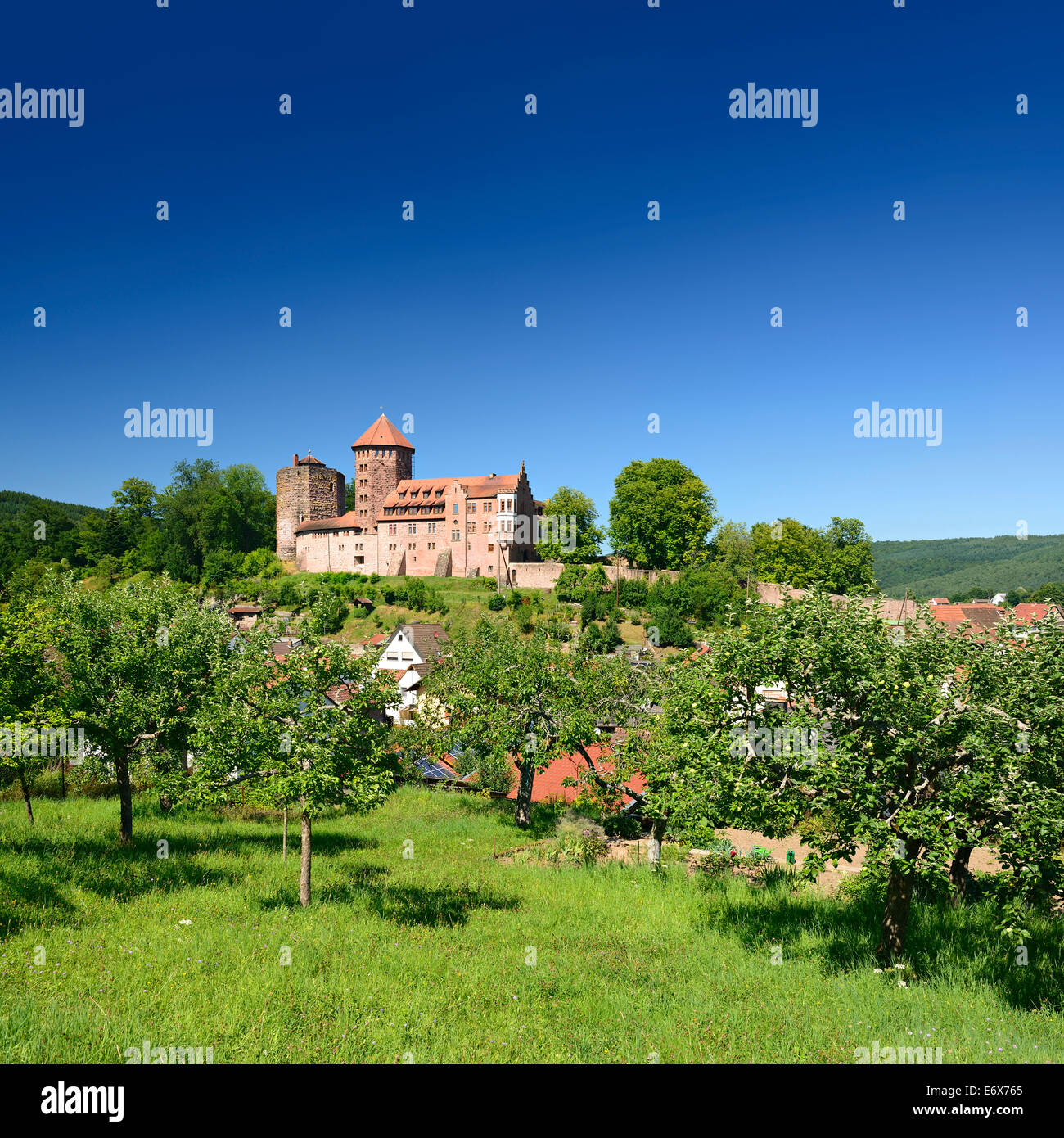 Orchard vis-à-vis Burg Rieneck Castle in Sinntal Valley, Lower Franconia, Bavaria, Germany - Stock Image