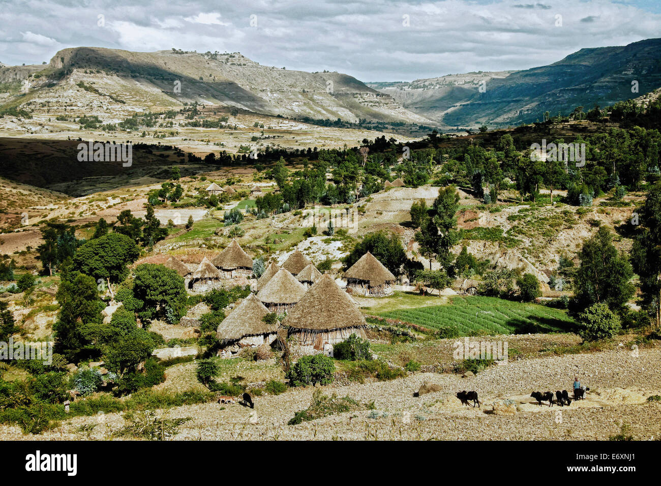 Landscape in the Ethiopian Highlands, Ethiopia, Africa - Stock Image