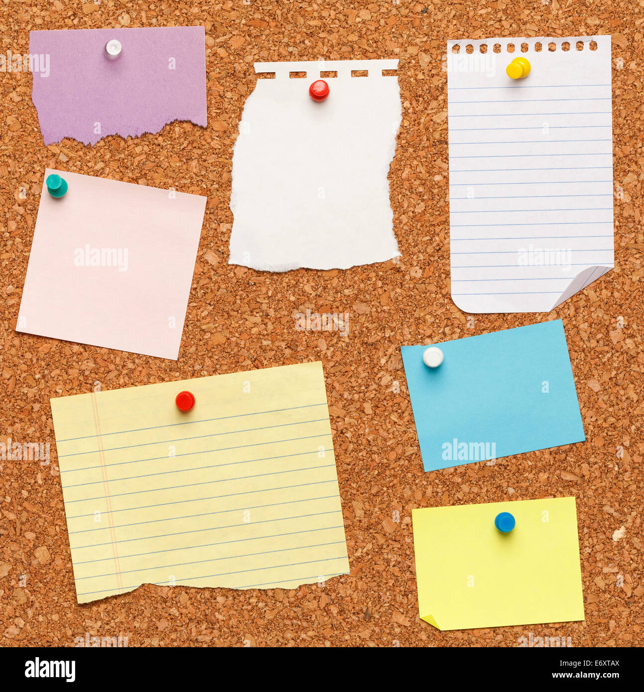 Different papers tacked on cork board. - Stock Image