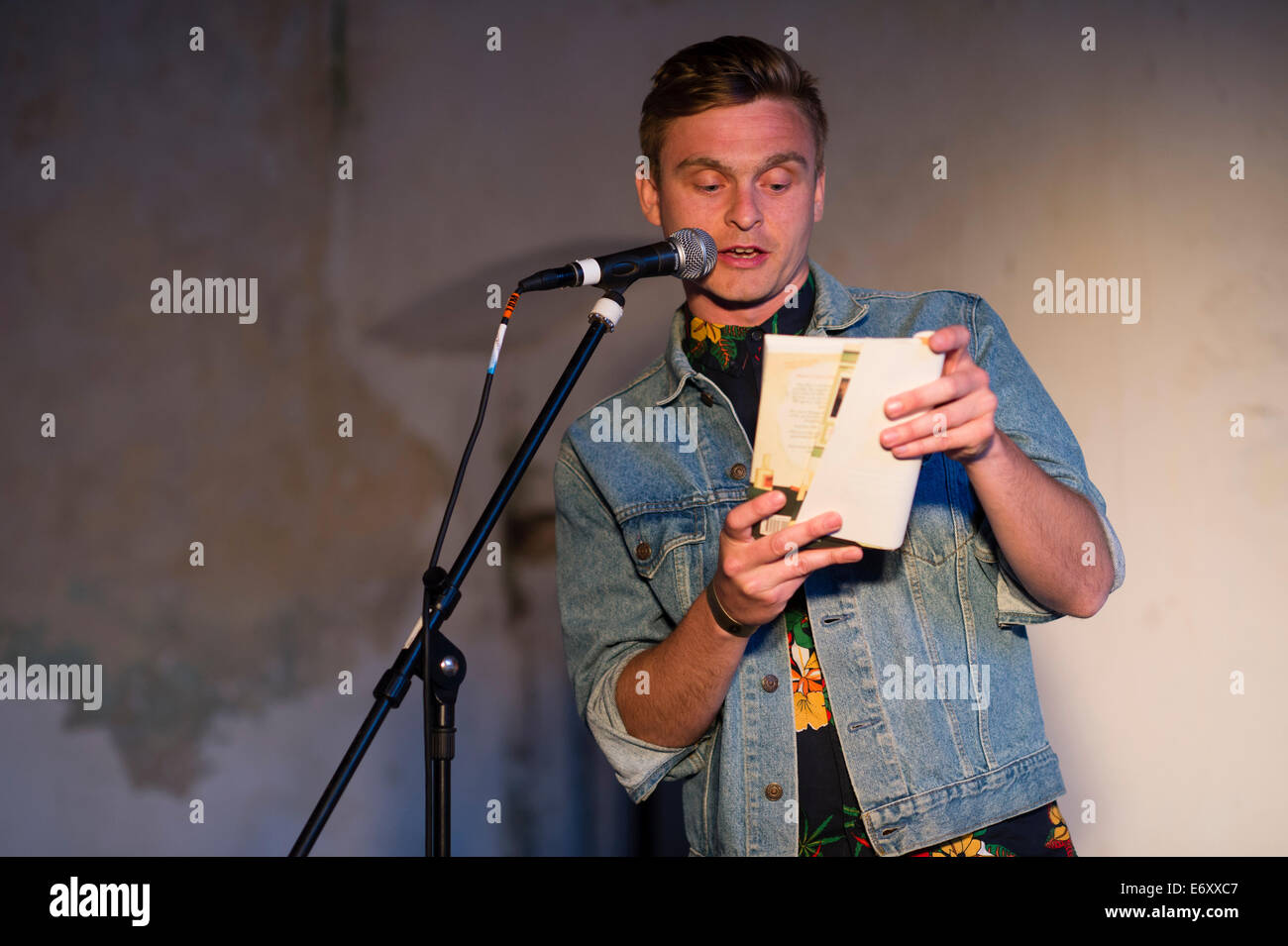 DAN TYTE reading from his debut novel at DINFEWR Literature Festival  June 2014, Newton House + Dinefwr Park, Llandeilo, - Stock Image