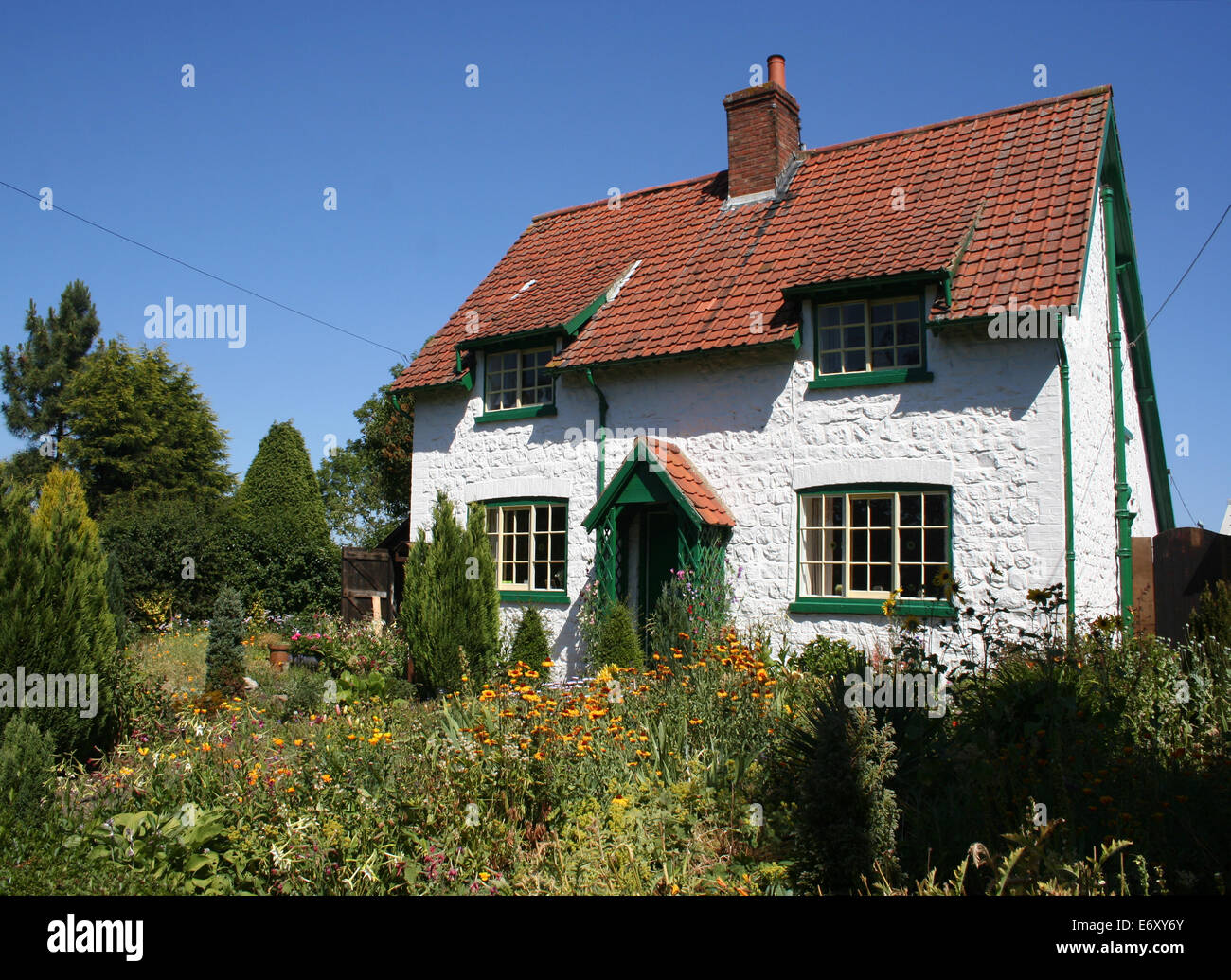 Closeup of typical English white wall cottage and garden - Stock Image