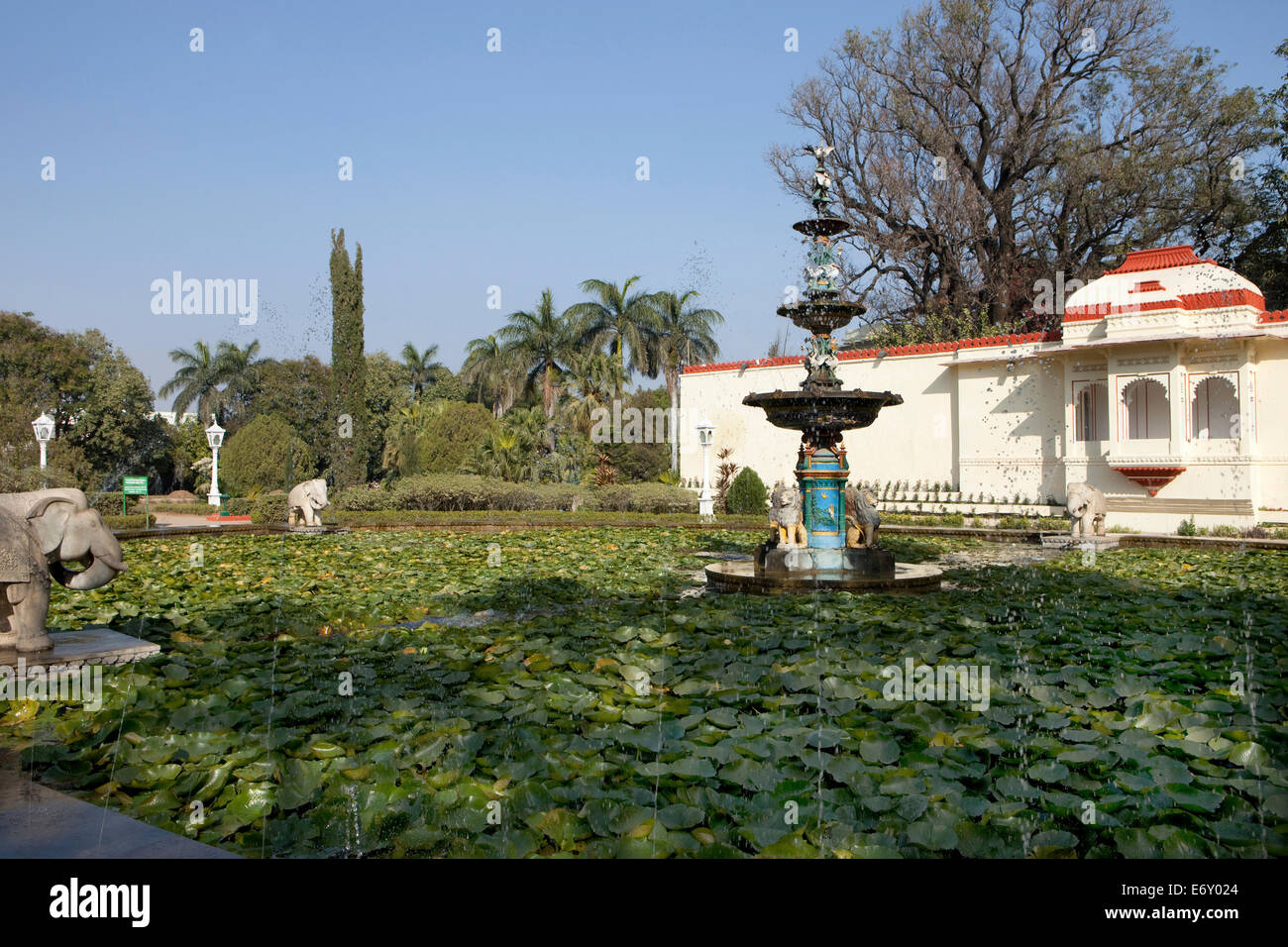 Lotus Pond In The Garden Of Saheliyon Ki Bari, Udaipur, Rajasthan, India