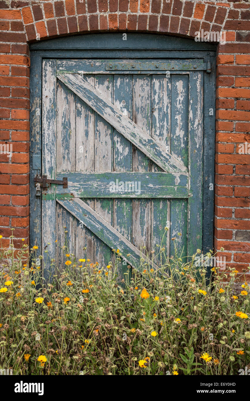 Weeds growing in front of an unused garden gate with faded paint set in a brick wall. - Stock Image