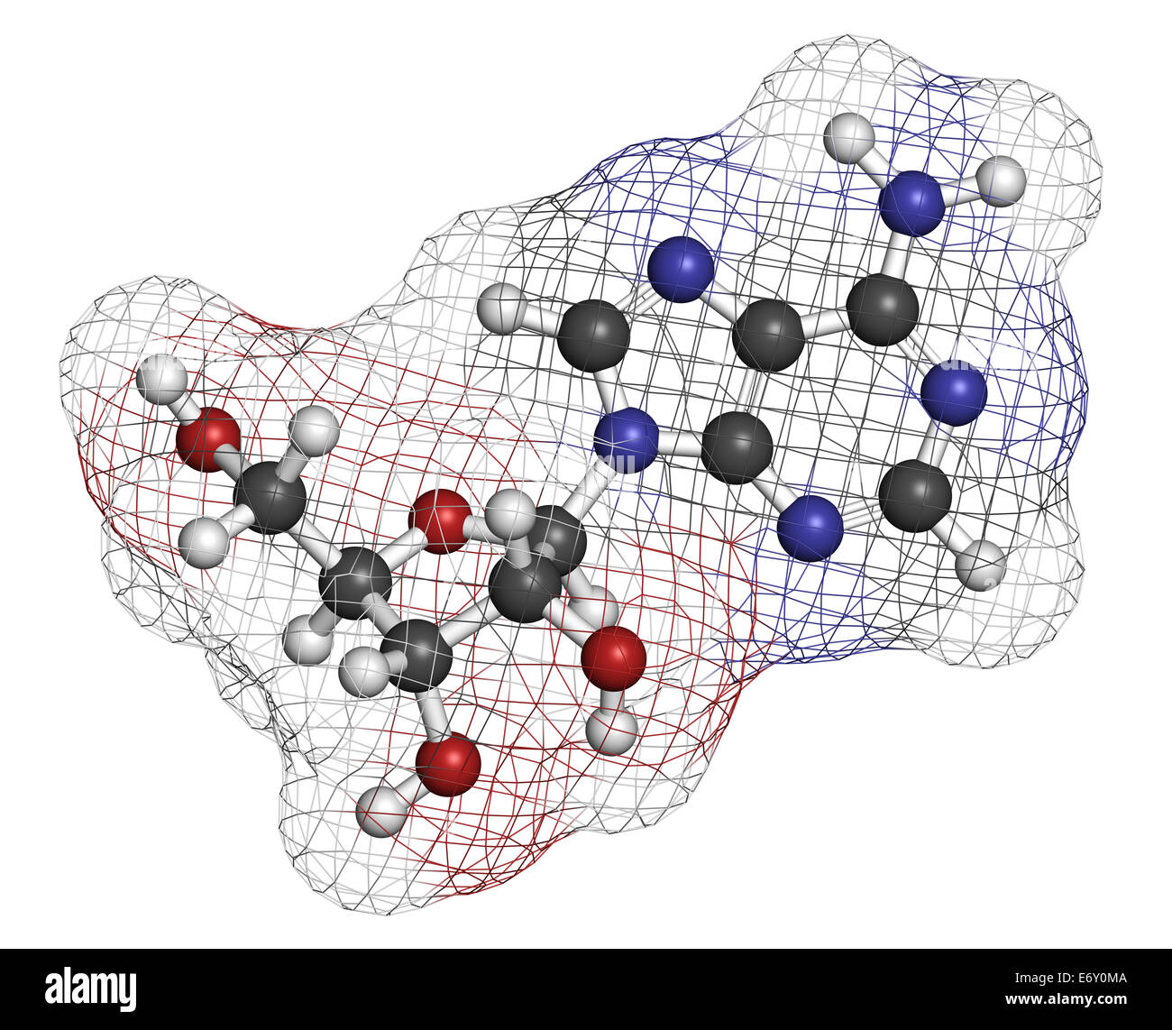 Adenosine (Ado) purine nucleoside molecule. Important component of ATP, ADP, cAMP and RNA. Also used as drug. Atoms Stock Photo
