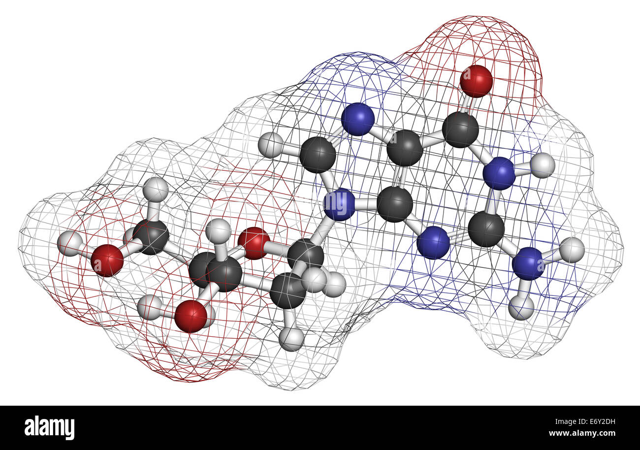 Deoxyguanosine (dG) nucleoside molecule. DNA building block. Atoms are represented as spheres with conventional - Stock Image
