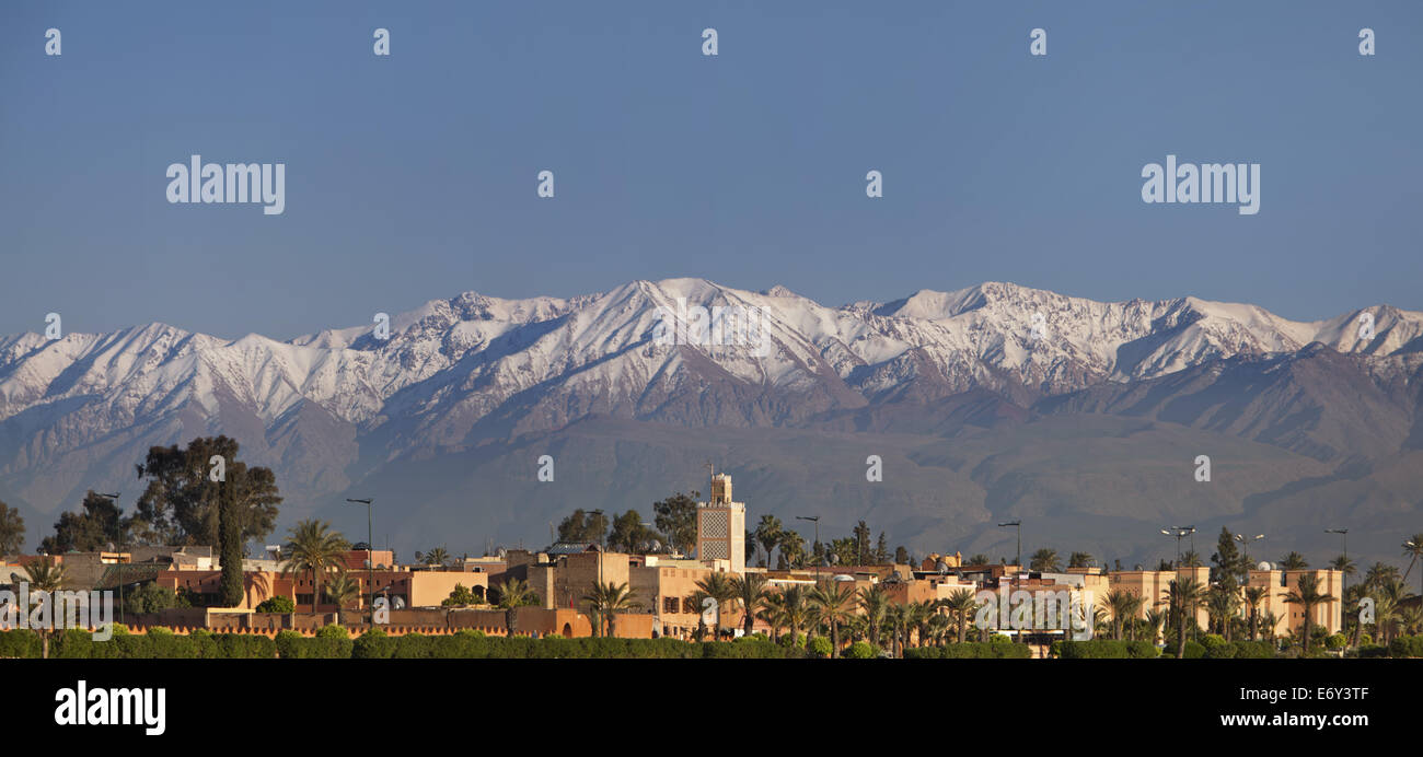 The south of Marrakech against the backdrop of the Atlas mountains, Marrakech, Morocco - Stock Image