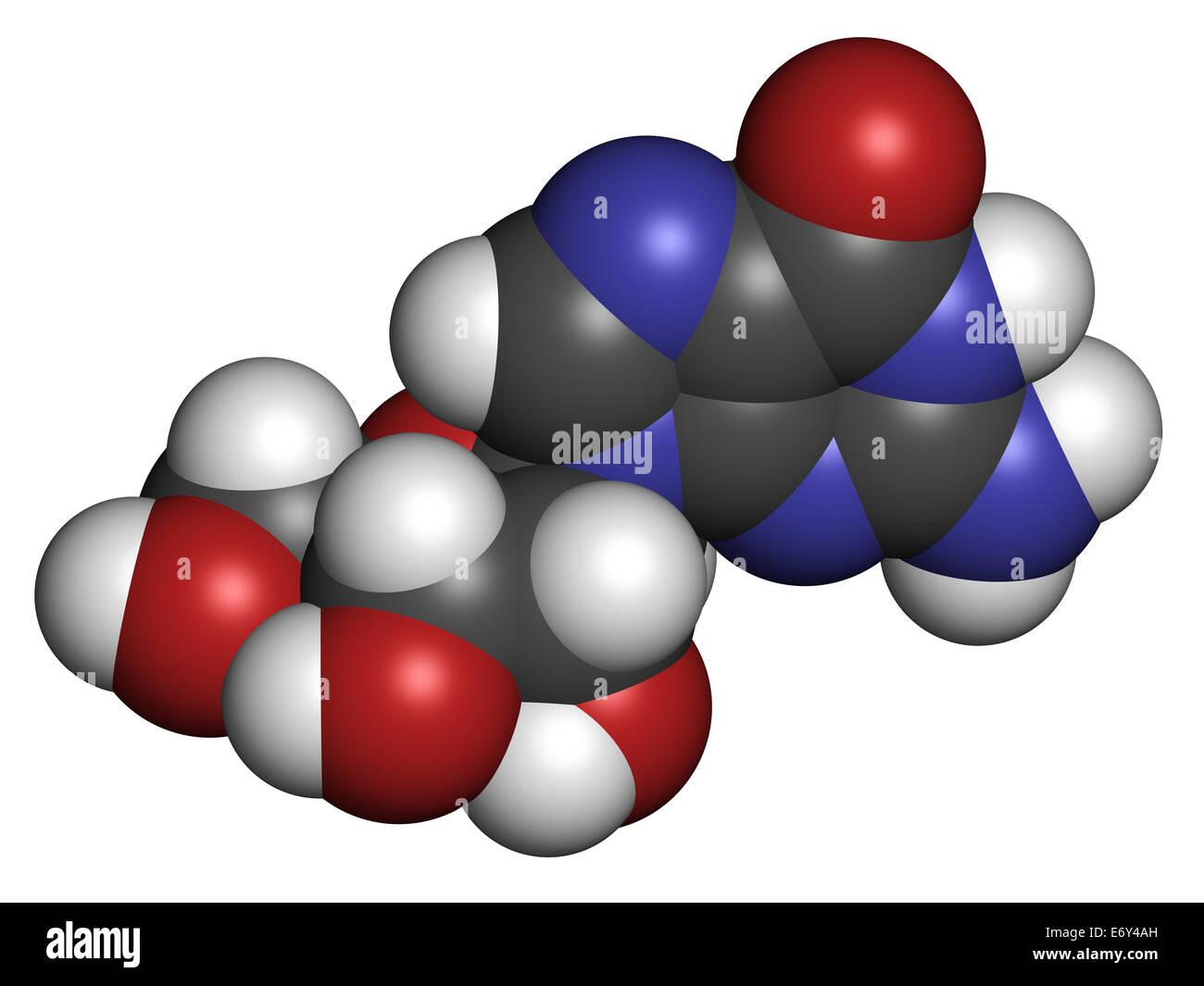Guanosine purine nucleoside molecule. Important component of GTP, GDP, cGMP, GMP and RNA. Atoms are represented Stock Photo