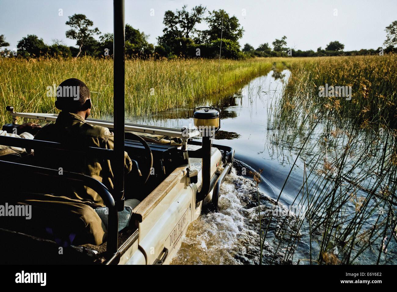 Game drive on Duba Island, Okavango Delta, Botswana, Africa - Stock Image
