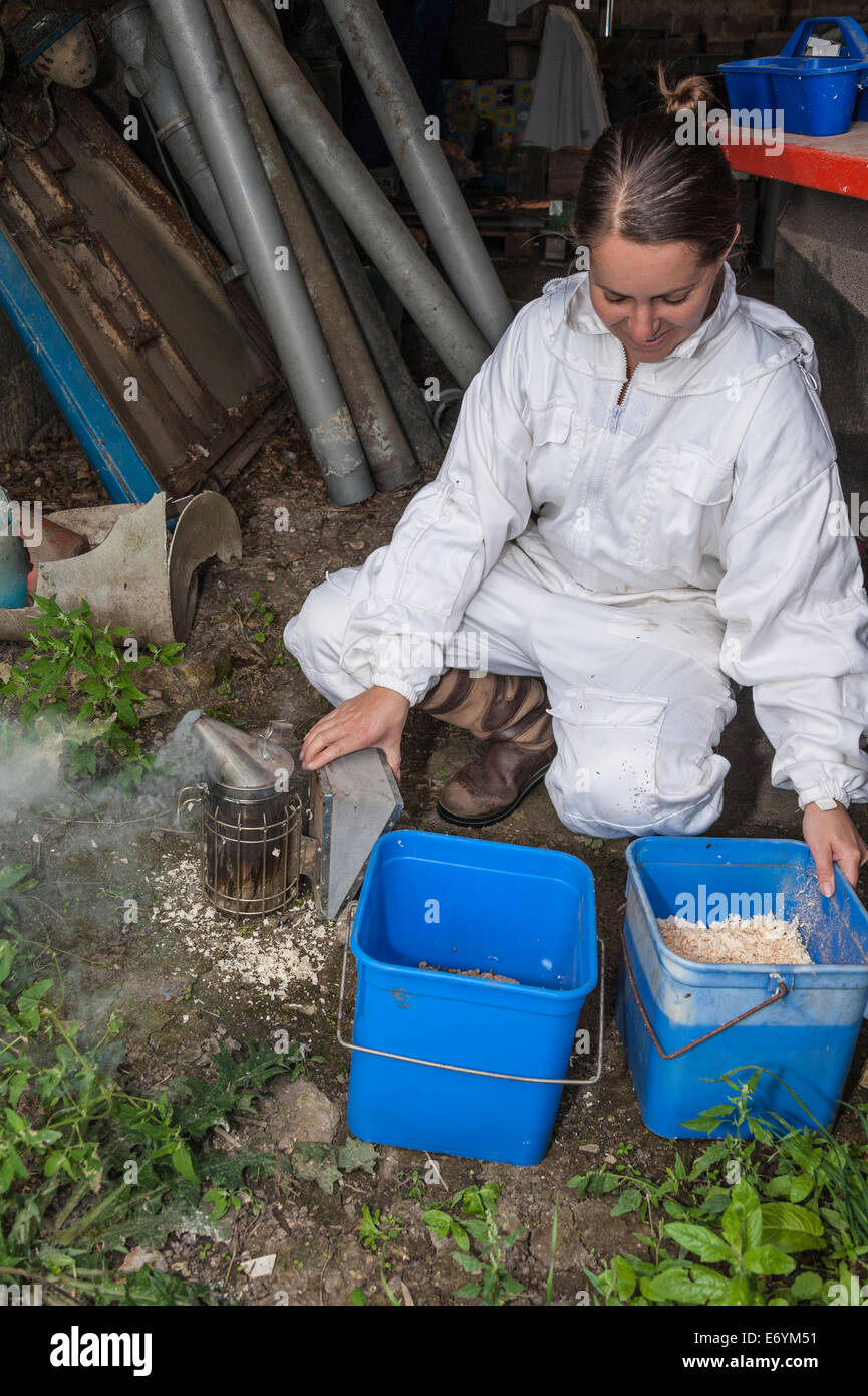 A woman beekeeper preparing her smoker before starting to work on her beehives. - Stock Image