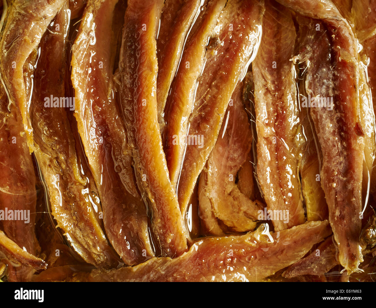 Anchovy fillets packed in olive oil - Stock Image