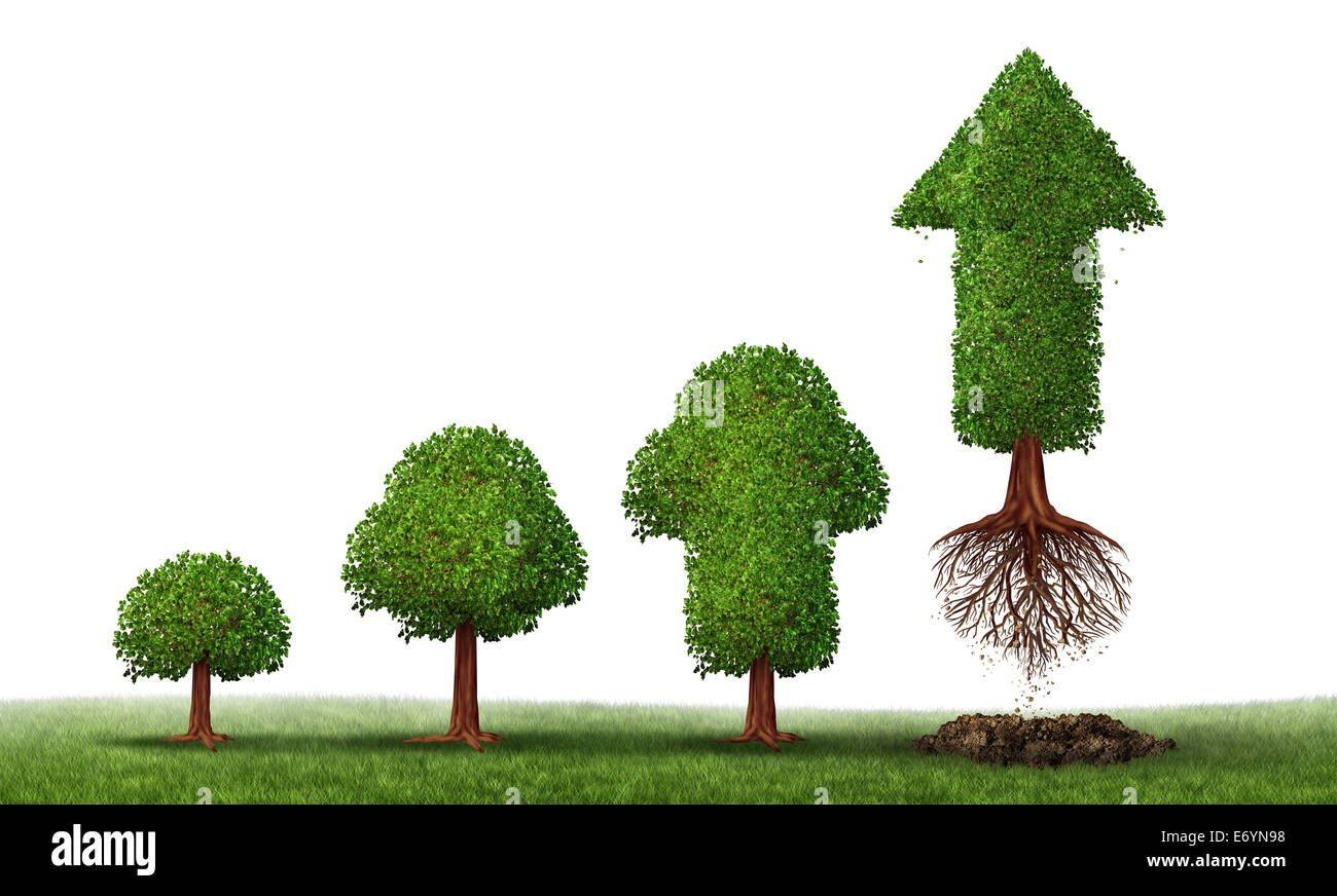 Investment maturity success as a business concept for growing wealth ingraphic as a small tree gradually turning - Stock Image