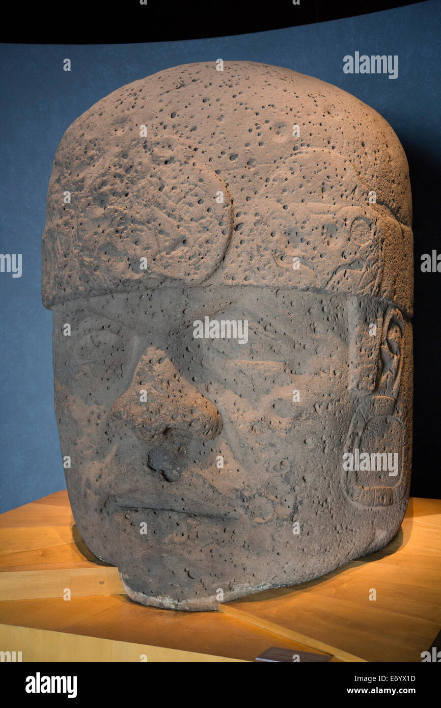 Mexico, Mexico City, National Museum of Anthropology, Olmec Colossal Head - Stock Image
