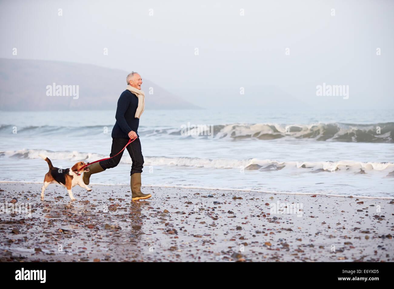 Senior Man Walking Along Winter Beach With Pet Dog - Stock Image
