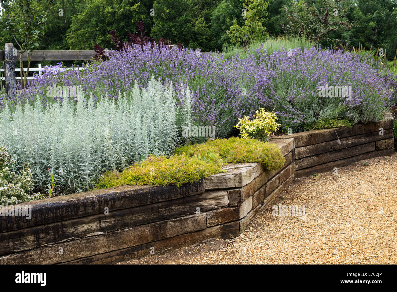 Old railway sleepers used to create a raised bed at for Garden pond design using sleepers