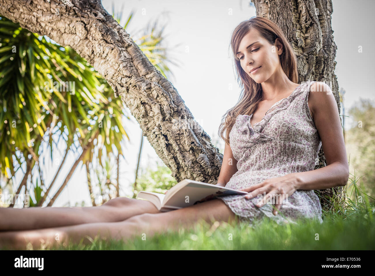 Mid adult woman reading book under palm tree in holiday home garden, Capoterra, Sardinia, Italy - Stock Image