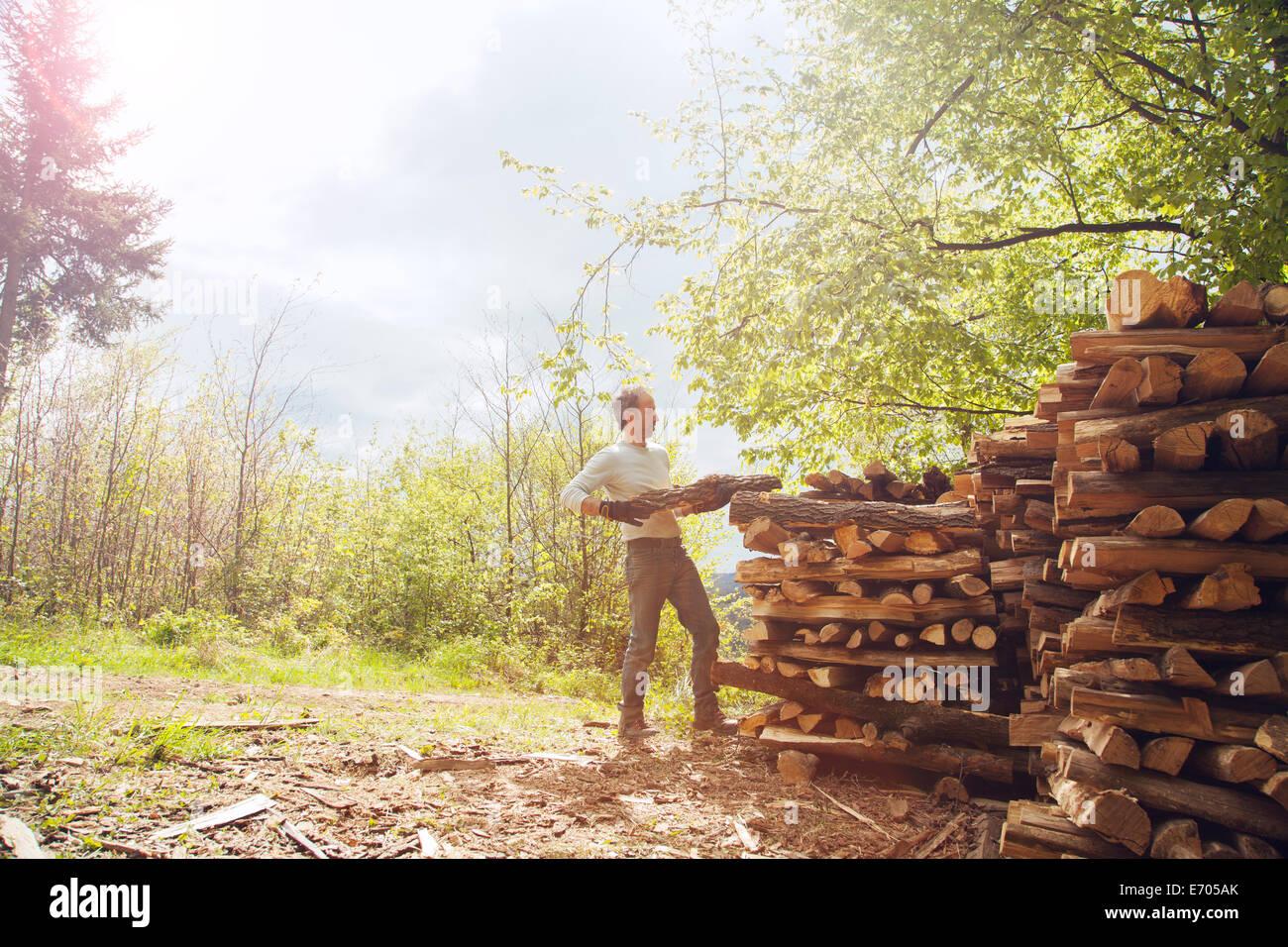 Man stacking cut wood - Stock Image