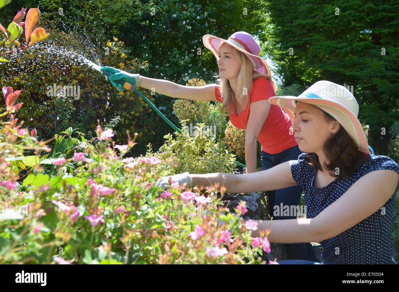 Young women watering garden with hosepipe - Stock Image