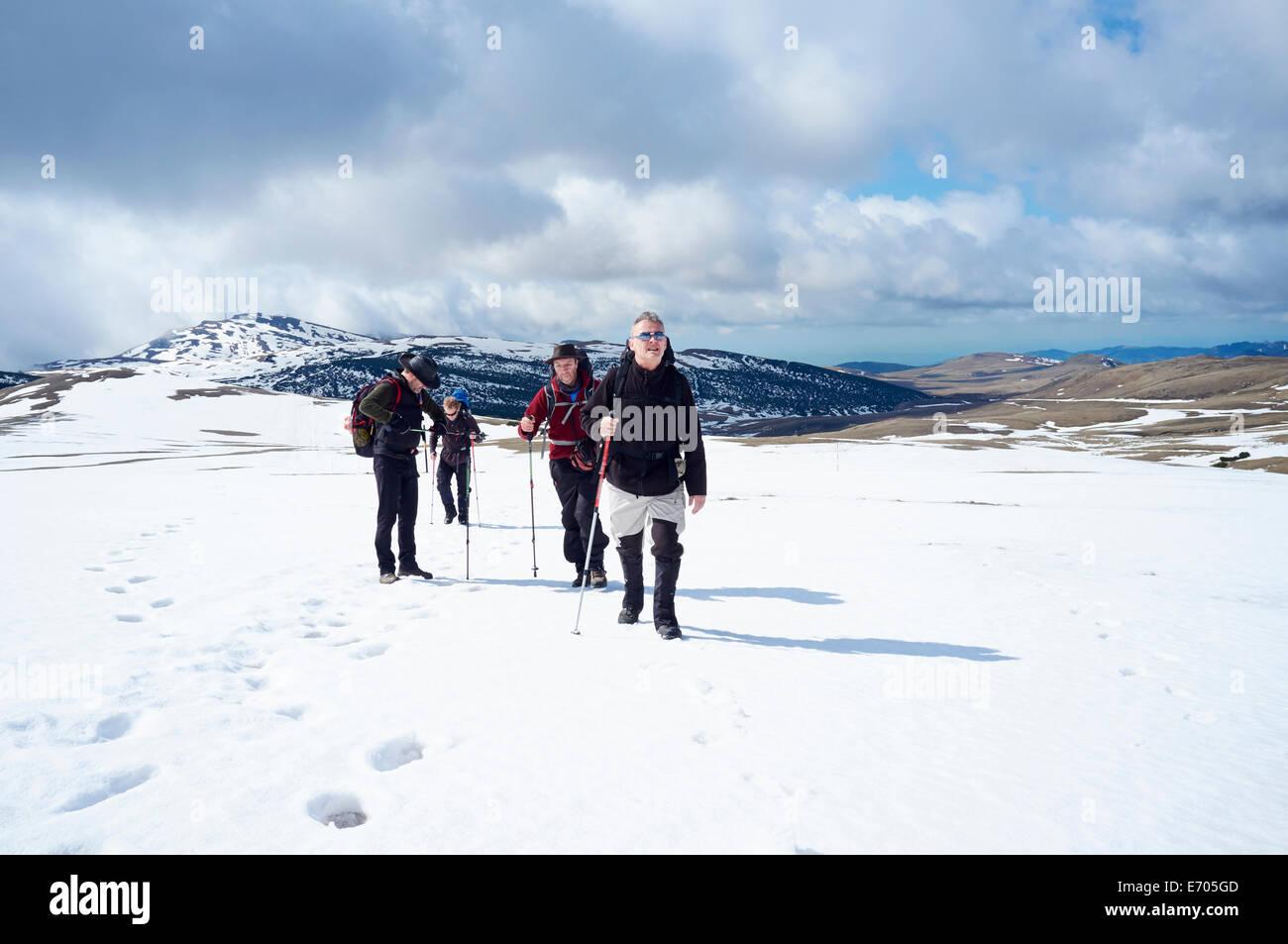 Four men hiking in snow, Bucegi Mountains, Transylvania, Romania - Stock Image