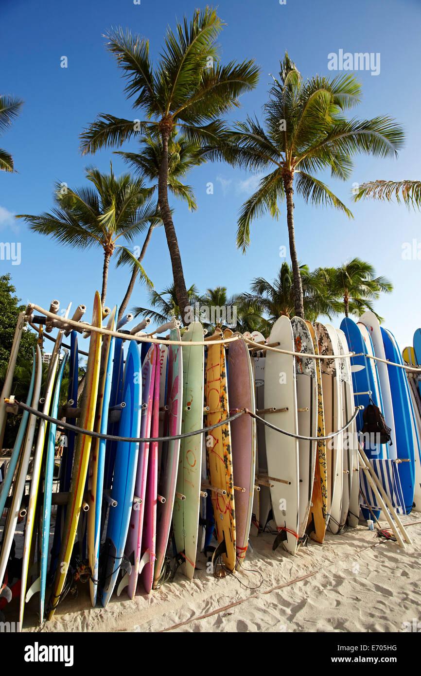 Row of surfboards on beach, Waikiki, Oahu, Hawaii, USA - Stock Image