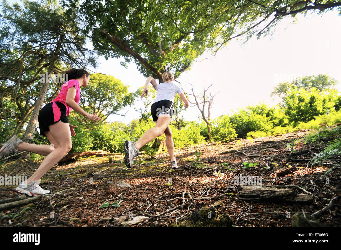 Two young women runners running up forest track - Stock Image