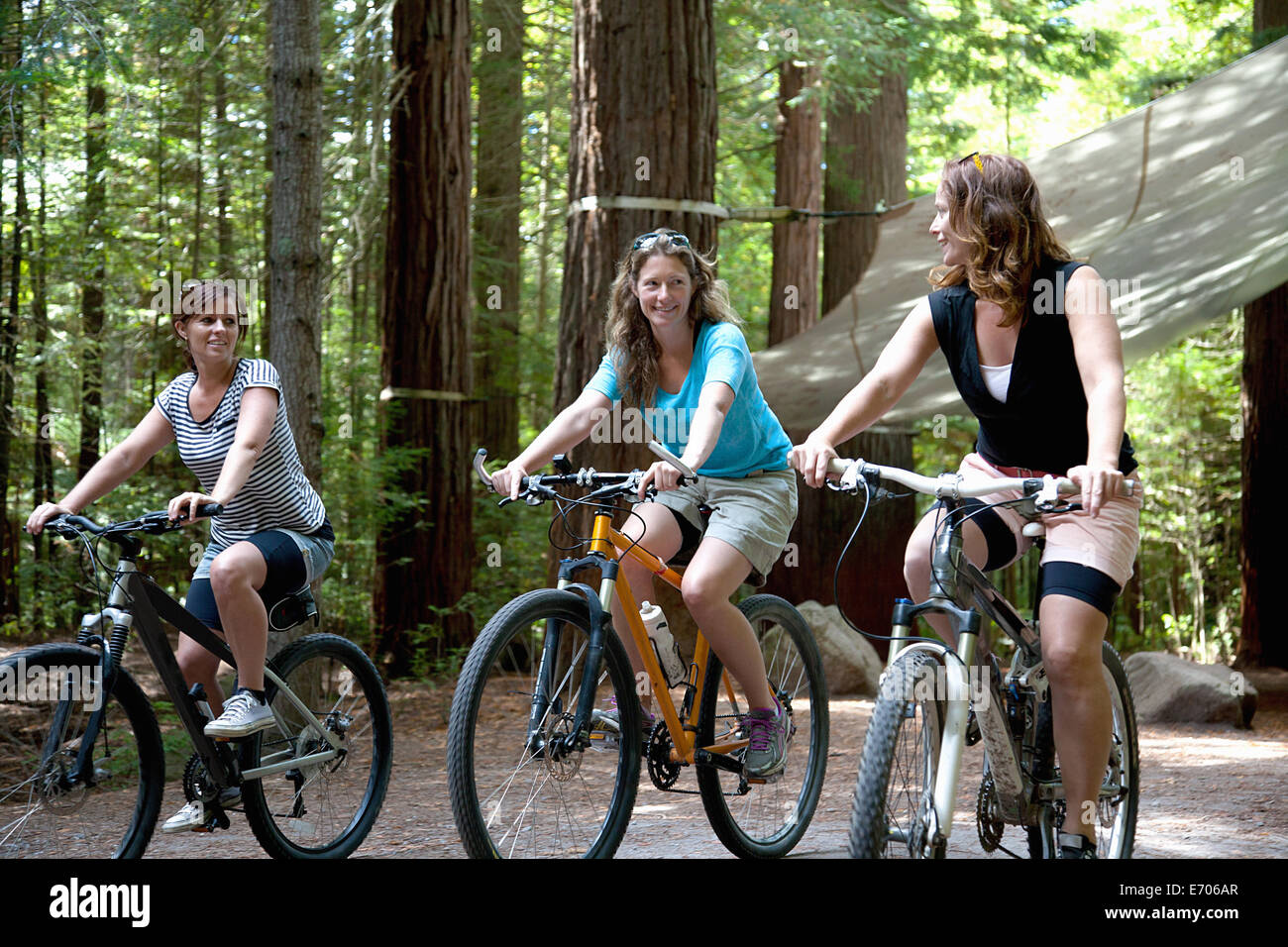 Three women mountain bikers cycling in forest - Stock Image