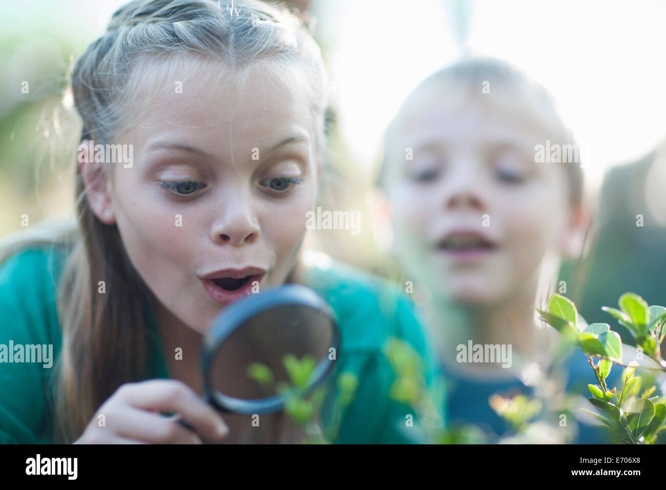 Brother and sister looking at plants with magnifying glass in garden - Stock Image