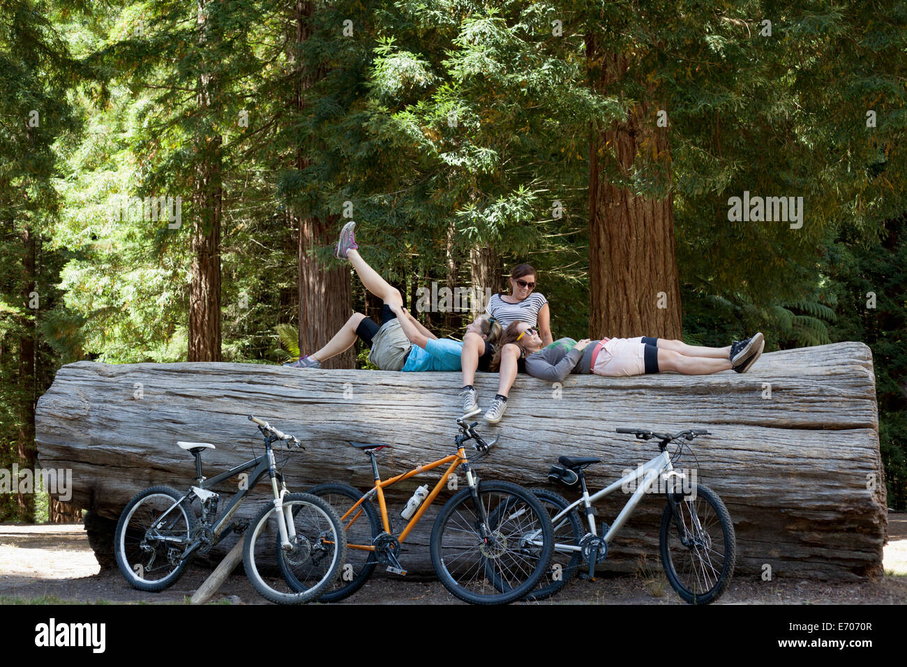 Three women mountain bikers taking a break on tree trunk in forest - Stock Image