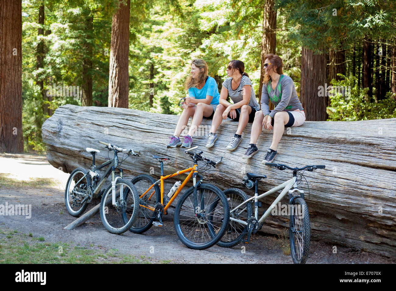 Three women mountain bikers sitting on tree trunk in forest - Stock Image