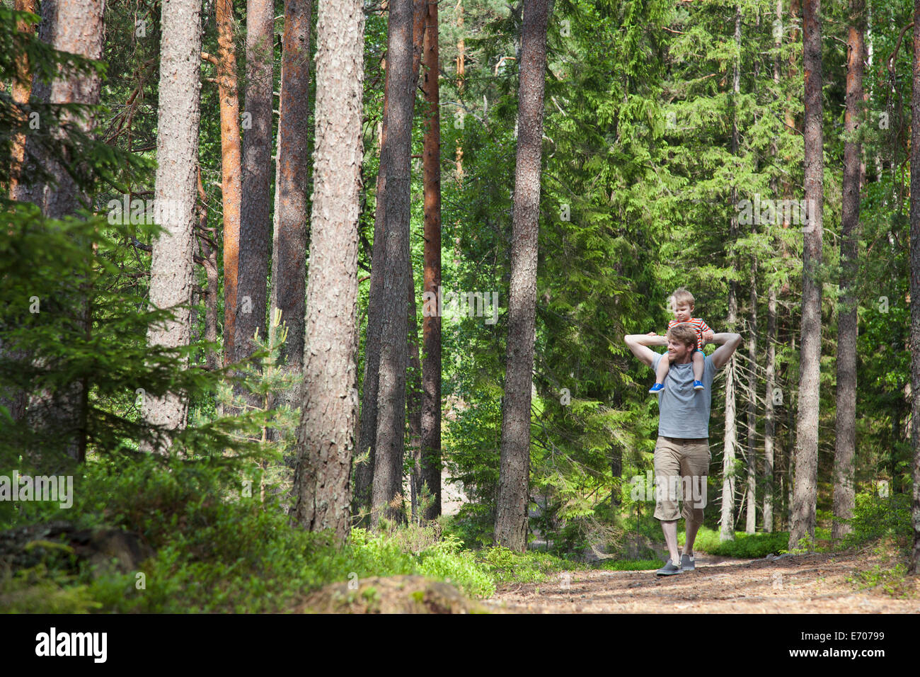 Father shoulder carrying toddler son through forest, Somerniemi, Finland - Stock Image