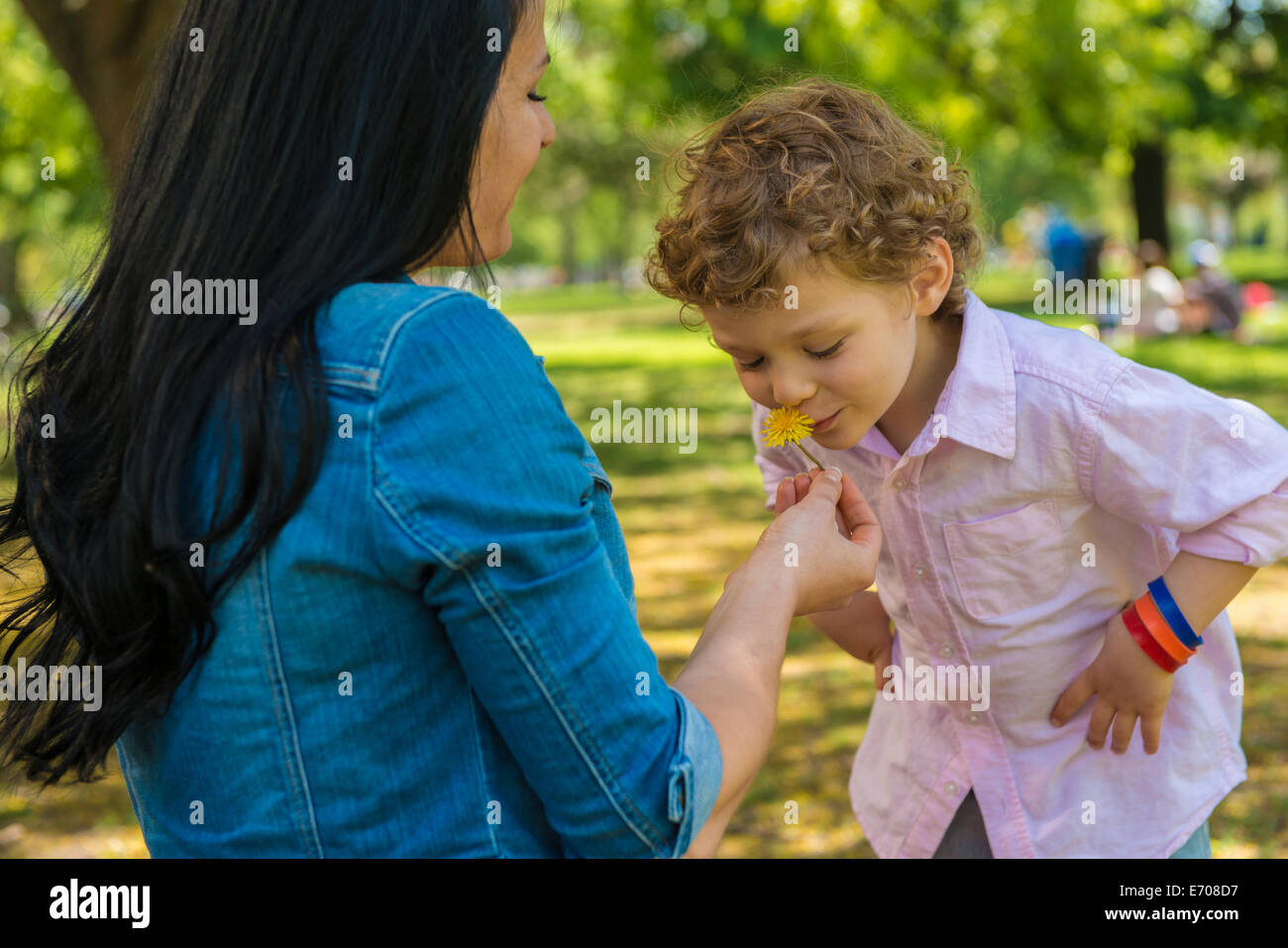 Young mother and son smelling flower in park Stock Photo